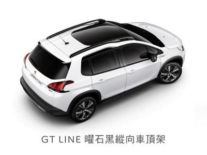 GTLINE-1